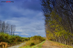 Camino (oscarberenguergrau) Tags: paisaje landscape spain espaa granada invierno cielo sky nubes clouds