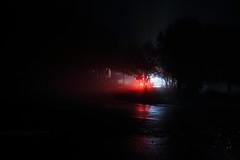 IMG_0937 (Ploigos) Tags: parnitha athens attiki greece reflections lights trees night