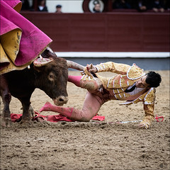 morneito (Manon71) Tags: 8demayode2016 morenitodearanda sanisidro2016 bullfight bulls espaa lasventas madrid spain tauromachie tauromaquia toreros toros espaa