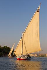 Sunset Felucca (Hector16) Tags: النيل dahabiyadream egyptology nile aswan sailing أسوان northafrica boat فيله النيل dahabiya egypt abuarrishqebli aswangovernorate eg