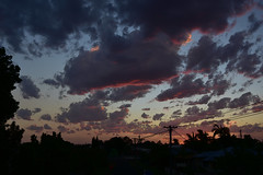 Hot day (Images by Jeff - from the sea) Tags: nikon d7200 dusk twilight trees clouds tamronsp2470mmf28divcusd bluesky bundaberg palmtrees redsunset 500v20f 1000v40f