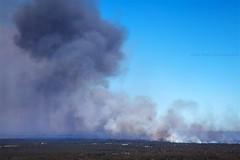 Cranebrook On Fire || WESTERN SYDNEY || AUSTRALIA (rhyspope) Tags: australia aussie nsw new south wales canon 5d mkii winmalee crane brook londonderry llandilo fire smoke bushfire summer western sydney rhys pope rhyspope