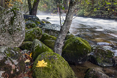 Rocky Riverbed (Kirk Lougheed) Tags: california usa unitedstates yosemite yosemitenationalpark autumn fall landscape nationalpark outdoor river mercedriver yosemitevalley