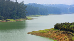 Sandynalla Lake (code_martial) Tags: d7100 1685mmf3556gvr ooty2016 ootacamund udhagamandalam lake sandynalla