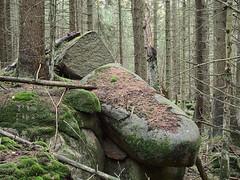 Harz_e-m10_100B047537