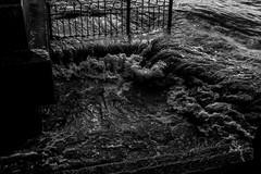 Battersea (michael.adeleke) Tags: goldandpoetry photography battersea bridge moody blackandwhite monochrome texture