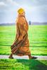 Monk (Cortez_CRO) Tags: amesbury england unitedkingdom gb stonehenge wiltshire salisbury monk orange green field grass walk walking