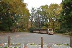 Train for happiness (kzmiz) Tags: nikond800e japan saitama hikigun namegawamachi yamada musashi shinrin koen park