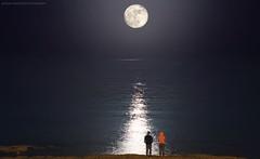 Super moon - Kuwait (khalid almasoud) Tags: sonya5100 supermoon kuwait photography sea beam landscape e sony 55210mm ilce5100 november2016