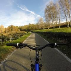 Morzano di Roppolo   Viverone   Piemonte (Boeris Bikes) Tags: boeris bicicletta natura road strada mountainbike cielo sky relax passeggiata vite passione ciclismo