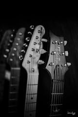 Mono Headstocks (Daniel Y. Go) Tags: fuji fujixpro2 xpro2 philippines headstocks guitars music mono bw