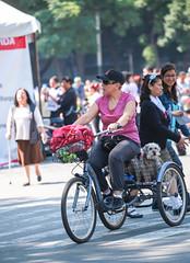 Any given Sunday 533 (L Urquiza) Tags: dogs ciudad de mexico city paseo la reforma paseodelareforma paseodominical sunday stroll