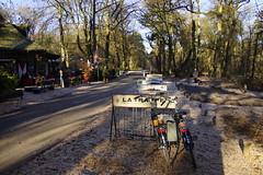Wandeling Gele Route Oisterwijk 04-12-2016 (marcelwijers) Tags: wandeling gele route oisterwijk 04122016 noord brabant nederland niederlande netherlands bos paybas wanderung wald wood winter winterse landschap natuurmonumenten wandeltocht wandelen boswandeling vennenroute vennen boshuis venkraai