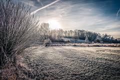 Winterland (rwfoto_de) Tags: winter pentaxda15hdltd rauhreif frost himmel baum bäume wiese sonne hoarfrost sky tree sun sunlight cloud cloudy