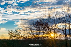 Welcome to December 3rd (The Suss-Man (Mike)) Tags: clouds gainesville georgia hallcounty lakelanier nature sky sonyilca77m2 sunrise sussmanimaging thesussman trees