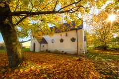 CHURCH OF ST MICHAEL AND ALL ANGELS, BEDDAU (technodean2000) Tags: church of st michael and all angels autumn colour color beddau
