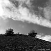 """""""Sky & Earth"""" - """"Ciel & Terre"""" (Corinne DEFER - DoubleCo) Tags: defer ciel sky corinnedefer paysage paisagens landscapes paesaggi paysages landschaften nature france negroyblanco travel nuageux nuages corinnedeferphotographies 法国 landscape alpesmaritimes paca minéral nb altitude clouds lignes courbes monochrome carré square squareformat aspremont montchauve"""