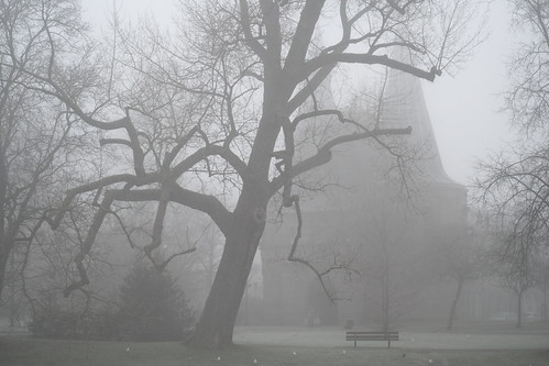 Cellebroederspoort in de mist