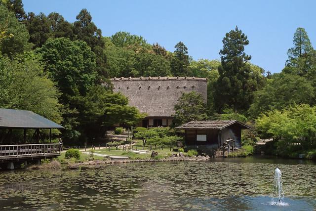 Botanical Garden 06