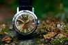 "Vostok Komandirskie ""Red Star"" 3/3 (fcafca) Tags: zeiss 35mm watch collection flektogon russian vostok cccp f24 komandirskie"