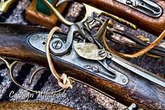 Alamo Gun