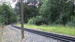 DFB Drachenfelsbahn Electric cograil motor unit climbing towards the Drachenfels. (Franky De Witte - Ferroequinologist) Tags: de eisenbahn railway estrada chemin fer spoorwegen ferrocarril ferro ferrovia