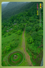 Silent Valley---------------12 (Binoy Marickal) Tags: india green tourism nature water rain kerala mala palakkad evergreenforest treaking silentvalleynationalpark nilgirihills mannarkkad mukkali kuzhur indiabinoymarickal