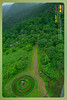 Silent Valley---------------12 (Binoy Marickal) Tags: india green tourism nature water rain kerala mala palakkad evergreenforest treaking silentvalleynationalpark nilgirihills mannarkkad mukkali kuzhur indiabinoymarickal