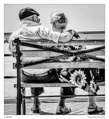 Sunny autumn of life (sdc_foto) Tags: street people blackandwhite bw white black love monochrome coneyisland mono candid oldness streetphotography sunflower 2014 pentax new york k30