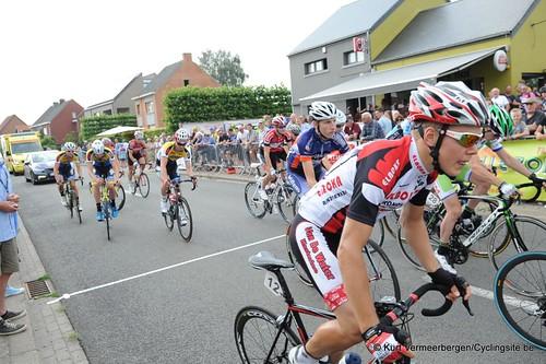 Geel Oosterlo  (40)