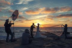 meta-matrimony (Conor F. Shine) Tags: lajollacove wedding bride groom sunset cool cool2 uncool uncool2 uncool3 uncool4 cool3 cool4 cool5 cool6 cool7 iceboxcool