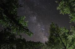 Milky Way (Francesco Alemanno) Tags: sky italy inspiration way stars nikon san italia severino lucano basilicata via cielo monte milky stelle 18mm milkyway pollino lattea d7000
