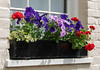 Window Box, Mill Lane, Welwyn