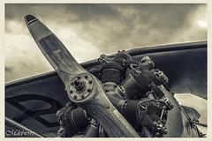 morane nb modif hdr (M DEBIERRE) Tags: france french ryan navy meeting chipmunk cap edge mustang tornado dc3 tigre hdr rennes texan t6 p51 grumman pitts reva huricane patrouille rafale alphajet dhc1 windwalkers zivko yak3 morane guiscriff acroez ec665 saefury mdebierre