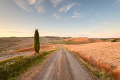 Toccata e fuga in Val D'Orcia (Simone Angelucci) Tags: sunset tramonto toscana valdorcia sanquiricodorcia