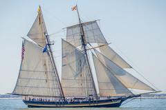 Pride of Baltimore II (4myrrh1) Tags: sailboat canon boats rebel bay virginia boat sailing norfolk parade va sail virginiabeach 2012 chesapeakebay t3i opsail efs55250