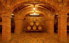 Salton (João Ebone) Tags: brasil wine bento cave rs madeira vinho vino carvalho barril salton tijolos gonçalves vinícola crianza barrica envelhecida envelhecimento