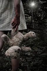 expectation (HannahP_92) Tags: bear light hope blood kill teddy forrest help revenge teddybear murder retribution expectation