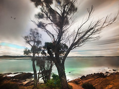 Welding Glass - Moruya Headland (caralan393) Tags: blur weather movement wind weldingglass