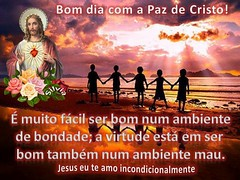 bomdia2708 (Silvia Mrcia) Tags: curta nossasenhora jesuscristo conhea igrejacatolica oraes compartilhe