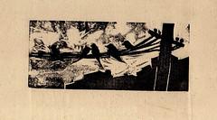 Domando tormentas (bigbangbebop) Tags: art libertad arte pajaros grabado volando responsabilidad angustia elegir existencialismo xilografía