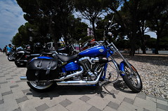 HOG Rally 2011, Biograd, Croatia (fjakone) Tags: party bike see chopper ride motorcycles croatia parade harley motorbike harleydavidson motorcycle biker hd custom hog davidson softail motorbikes sportster touring harleydavidsonmotorcycles bikeshow riders motori biograd vrod custombike cvo 2011 faaker harleyownersgroup 20thannualeuropeanhogrally2011
