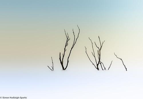 Dead Snow - Day 1 by Simon Hadleigh-Sparks (On Explore 17th Sept 2014)