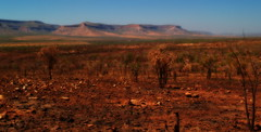 Colors of the Kimberly/W.A (bushman58929) Tags: outback thekimberly australian australia travel tourist colors reddirt landscape dust country olympus