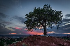 One Tree Hill in Kodachrome (EricGail_AdventureInFineArtPhotography) Tags: tree sunset kodachrome basin ericgail adventuresinfineartphotography bryceviewcampground sky view canon 70d