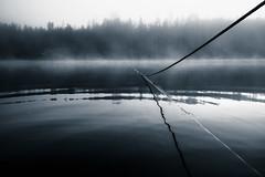Lifeline (trm42) Tags: autumn sumu köysi mustavalko kansallispuisto finland usva syksy fall suomi bw mist heijastus reflection fog nationalpark mv ropecon teisko kã¶ysi