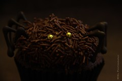 Something Yummy is Lurking in the Dark (Miel Photopgraphy) Tags: october halloween cupcake spider chocolate