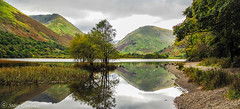Brothers Water reflections. (steve.gombocz) Tags: sceneryshooting scenery simplylandscapes landscapes westcumbria cumbria colour colours color colourmania natureisbeautiful lakedistrictuk out outandabout lakes olympusamateurs landscapephotos panoramicphotos water reflections reservoirs landscapescenes moutains hills fells brotherswater walking middledodd panoramicviews panorama nature naturesviews lakescenes landscapephotographs landscapephotography landscapepictures nicepictures nicelandscapes flickrlandscapes flickrscenery explorelandscapes explorescenery explorelakes lakeviews olympus olympususers olympuscamerausers olympusmzuiko25mmf18lens olympusm25mmf18 olympusdigitalcamerausers micro43rdsuk olympuszuikodigitalclub olympuseurope olympusem5mark2 reflectivewater nationalpark photography