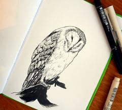 07.10 (ria_arei) Tags: inkbober inktober2016 ink inkart october challenge