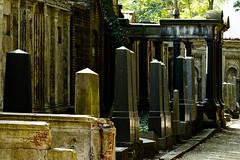 Jdischer Friedhof (frodul) Tags: friedhof judenfriedhof jewisch grabstein efeu reihe grabmal erinnerung sandstein marmor deutschland grabsttte ruhesttte jewish